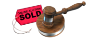 Online Auction Sites Review