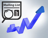 Capitalize on Marketing Returns with Targeted Mailing Lists - Blue Mail Media