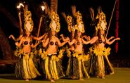 MAUI RESTAURANTS , HAWAII LUAU , MAUI ACTIVITIES, MAUI THINGS TO DO, LAHAINA WEBCAMS