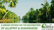 A Dream Voyage on the Backwaters of Alleppey & Kumarakom