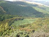 Hinewai Reserve - Wikipedia, the free encyclopedia