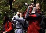 Ruggedy Range Guided Nature Walks, Birdwatching, Stewart Island & Ulva Island, New Zealand, Off the Beaten Track Wild...
