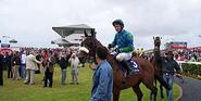 Galway Races - Wikipedia, the free encyclopedia