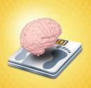 Modafinil (Provigil) Weight Loss Reviews, Results and Why it Works