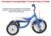 Balance bike vs. Tricycle for 2 year old - Mothering Forums