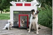 Houses for Dogs | ArchDaily