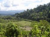 La Gamba, Golfito, Costa Rica 10,000 m2 For Sale Titled Property