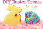 DIY Easter Treats for Dogs