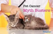 Pet Cancer Myth Busters