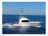 Mauna Kea Chartered Boats Hire, Sportfishing Charters - Gold Coast