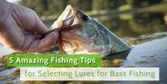 How to go for fishing lures for bass fishing?