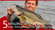 5 important things that will help you in catching a big smallmouth fish