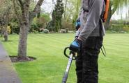 2 In 1 Tool: Brushcutter And Line Trimmer