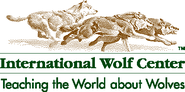 Wolf Cams | International Wolf Center