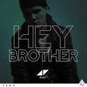 "Avcii ""Hey Brother"""