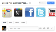 Google Plus for Business SEO Tips - Fill in your Google+ Business Profile Properly - Google Plus Business Pages