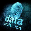 How You Can Complement Data Security Solutions to Safeguard Your Business