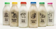 The Best Dairy-Free Milk Alternatives - the Daily Grind