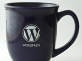 10 Reasons Why I Use WordPress - TentBlogger