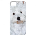 West Highland White Terrier Puppy iPhone 5 Case from Zazzle.com