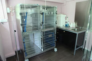 Personal Pet Care at Mount Pleasant Singapore