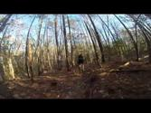 Trail Riding In Williamsburg Va (freedom park loop c)