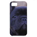 French Bulldog Case-Mate Vibe iPhone 5 | Fineart Smartphone Cases