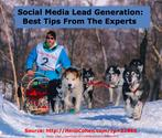 Social Media Lead Generation: Best Tips From The Experts - Heidi Cohen