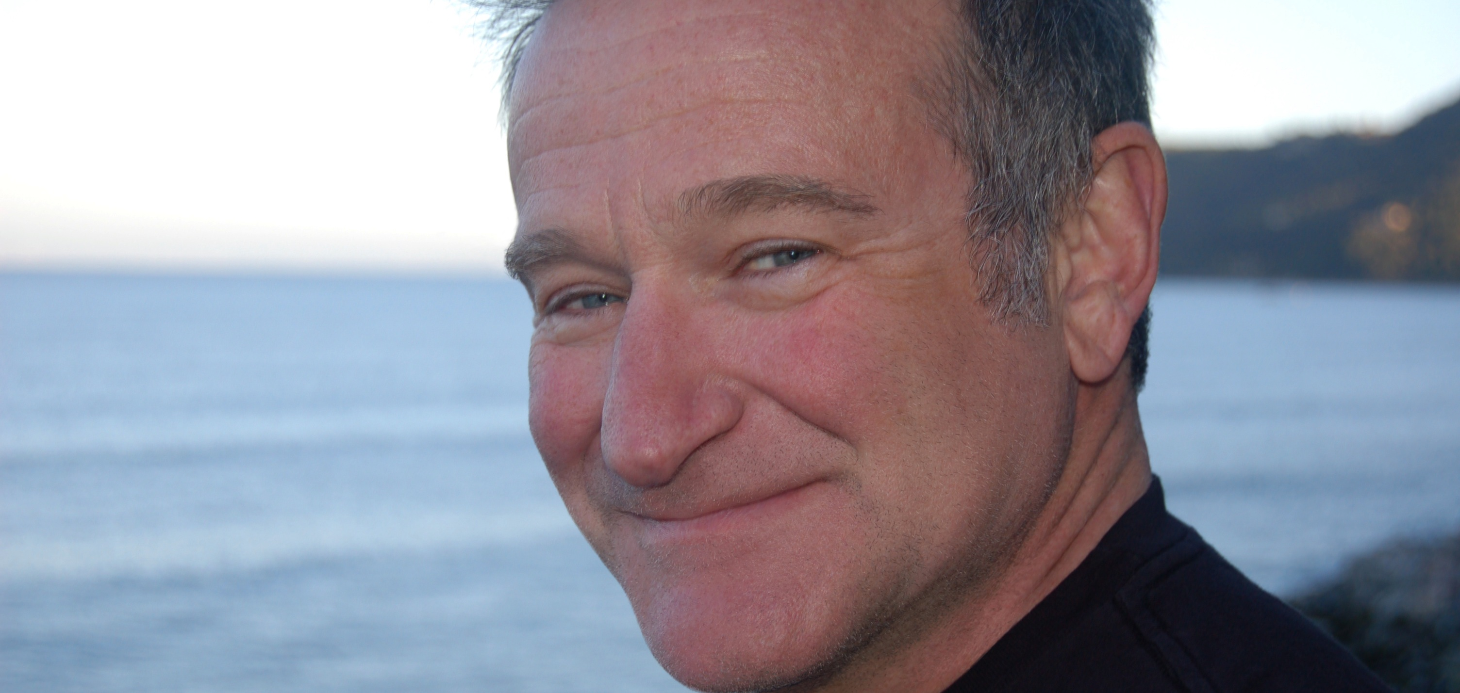 Headline for The Ten Best Performances of Robin Williams - Listly Listagram #28