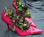 Recycle Shoes for Planters, Cheap Decorations