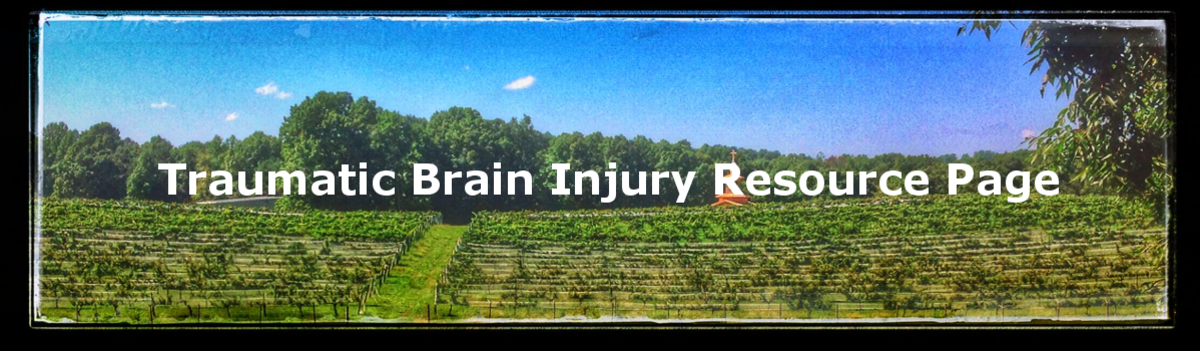 Headline for Traumatic Brain Injury Resource List