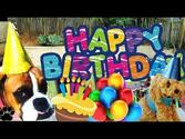 DOG BIRTHDAY PARTY - How to throw your dog a party- a tutorial by Cooking For Dogs