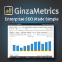 Enterprise SEO Made Simple - Ginzametrics