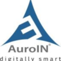 AuroIN LLC