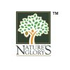 Nature's Glory Pte Ltd.
